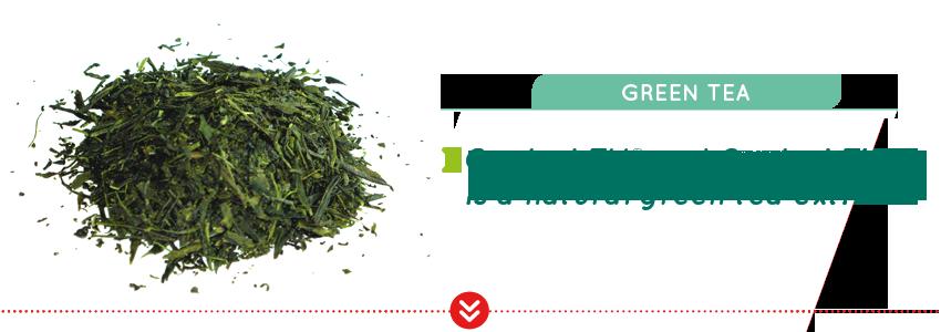 oxylent-tv